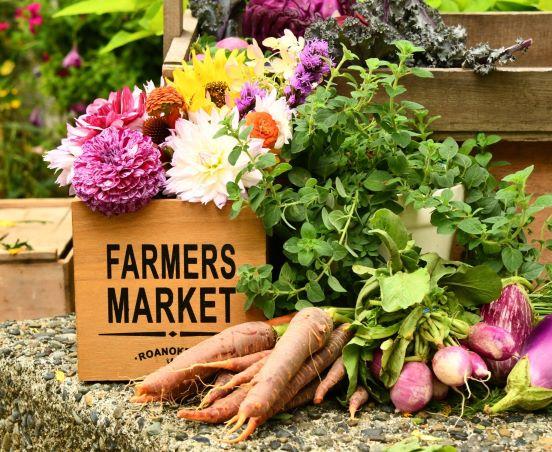 Candia Farmers Market